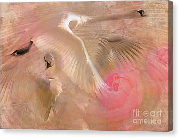 Ode To A Swan 2015 Canvas Print