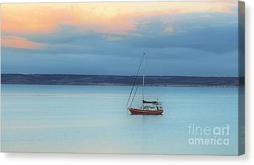 Canvas Print featuring the photograph Off Sailing by Stephen Mitchell