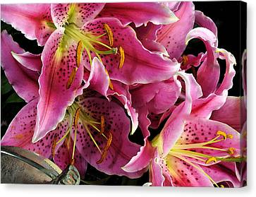 Canvas Print featuring the digital art Offering #4 by Karo Evans