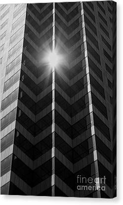 Office Art - Black And White Canvas Print by Carol Groenen