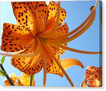 Office Artwork Tiger Lily Flowers Art Prints Baslee Troutman Canvas Print by Baslee Troutman