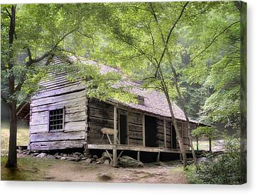 Ogle Homestead - Smoky Mountain Rustic Cabin Canvas Print by Thomas Schoeller