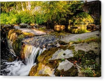 Ogwen Bank Waterfall  Canvas Print by Adrian Evans
