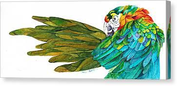 Oh Mya Canvas Print by Sherry Shipley