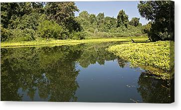 Oh The Calm Of It All Canvas Print by Charlie Osborn