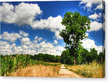 Ohio Family Farm Lane Canvas Print by Mel Steinhauer