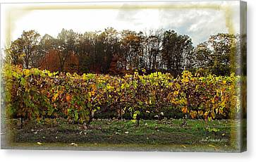 Canvas Print featuring the photograph Ohio Winery In Autumn by Joan  Minchak
