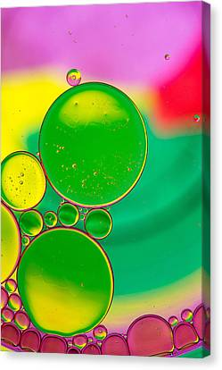Oil And Water P Canvas Print by Rebecca Cozart