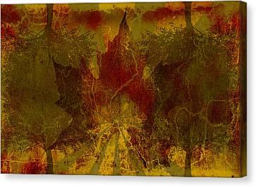 Ok Fall Canvas Print by Shawn Ross