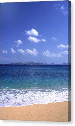 Okinawa Beach 8 Canvas Print by Curtis J Neeley Jr