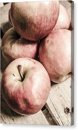 Old Apple Crate Canvas Print by Jorgo Photography - Wall Art Gallery