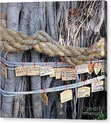 Old Banyan Wishing Tree Canvas Print by Yali Shi