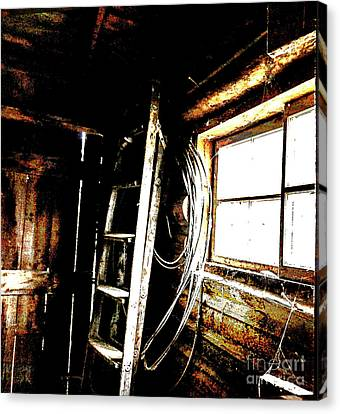 Old Barn Ladder Canvas Print