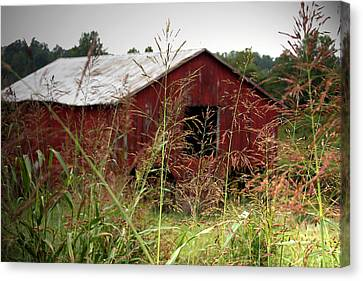 Old Barn Xii Canvas Print