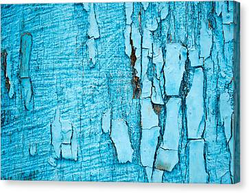 Canvas Print featuring the photograph Old Blue Wood by John Williams