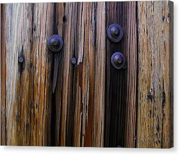 Old Door With Bolts And Nails Canvas Print