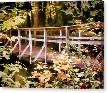 Old Bridge In The Woods In Color Canvas Print