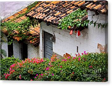 Old Buildings In Puerto Vallarta Mexico Canvas Print by Elena Elisseeva