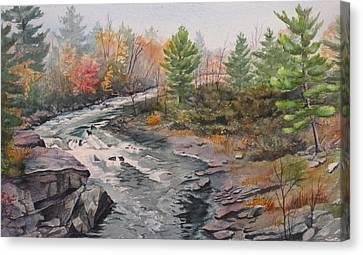 Old Burleigh Stream Canvas Print by Debbie Homewood
