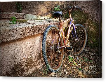 Old Bycicle Canvas Print by Carlos Caetano