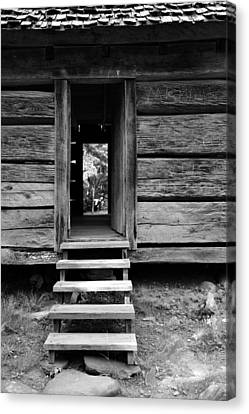 Old Cabin Canvas Print by David Lee Thompson