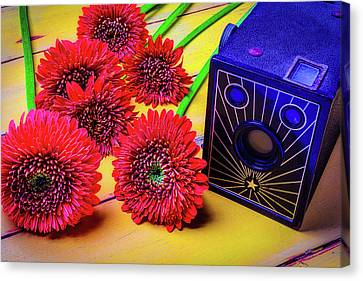 Old Camera And Dasies Canvas Print by Garry Gay