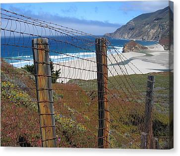 Old Cattle Ranch In Big Sur Canvas Print by Don Struke