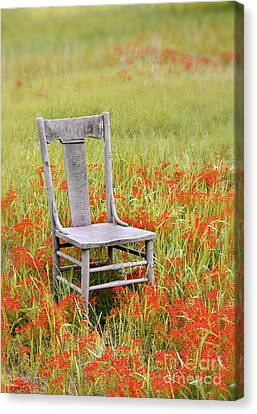 Chair Canvas Print - Old Chair In Wildflowers by Jill Battaglia