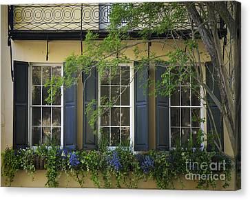 Old Charleston Window  Canvas Print