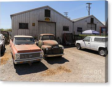 Old Chevrolet Trucks At The Art Mossi Auto And Truck In Petaluma California Usa Dsc3853 Canvas Print by Wingsdomain Art and Photography