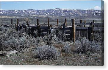 Old Corral Canvas Print by Susan Pedrini