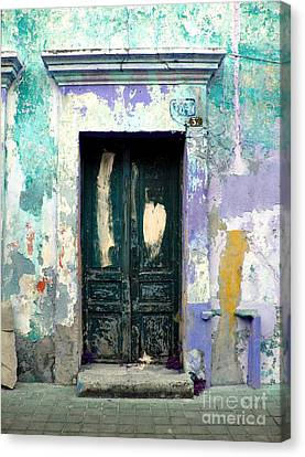 Old Door 4 By Darian Day Canvas Print