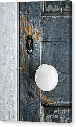 Old Door Fragment Canvas Print by Elena Elisseeva