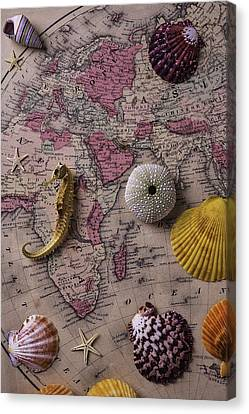 Old Europe Map With Shells Canvas Print