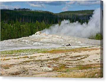 Old Faithful - An American Icon In Yellowstone National Park Wy Canvas Print by Christine Till