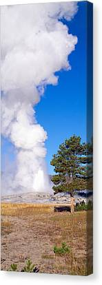 Old Faithful Geyser Erupting Canvas Print by Panoramic Images