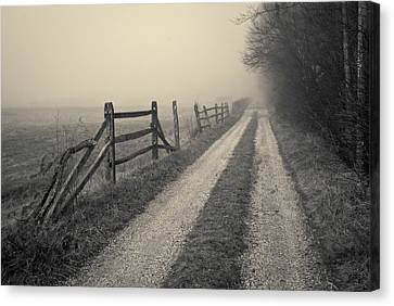 Old Farm Road Toned Canvas Print by David Gordon