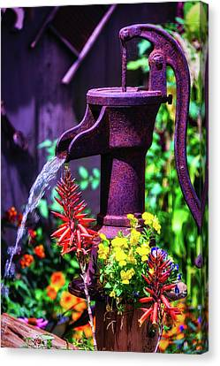 Pour Canvas Print - Old Farm Water Pump by Garry Gay