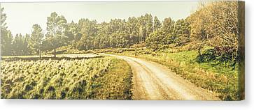 Old-fashioned Country Lane Canvas Print