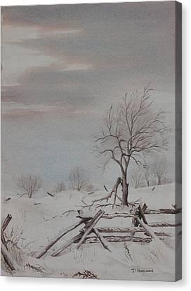 Old Friends  Canvas Print by Debbie Homewood