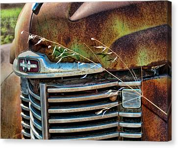 Old Grill Canvas Print
