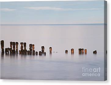 Old Groyne Canvas Print by Anne Gilbert