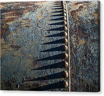 Old Grunge Canvas Print by Mary Hone