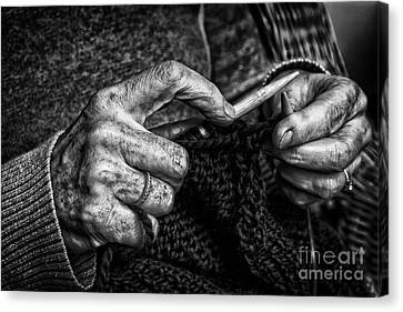 Old Hands Canvas Print