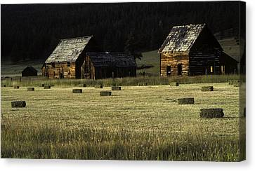 Old Homestead-potomac Montana Canvas Print by Thomas Schoeller