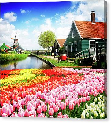 Zaandijk Canvas Print - Old Houses Of Zaanse Schans by Anastasy Yarmolovich