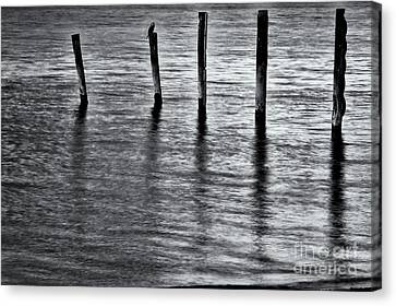 Canvas Print featuring the photograph Old Jetty - S by Werner Padarin