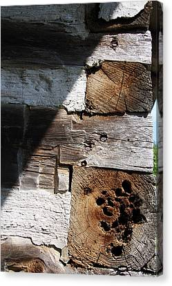 Old Log House Detail Canvas Print by Joanne Coyle
