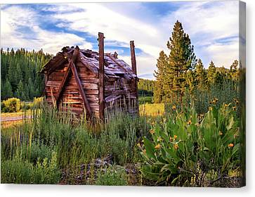 Old Lumber Mill Cabin Canvas Print