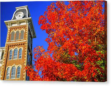 Old Main Maple Canvas Print by Damon Shaw